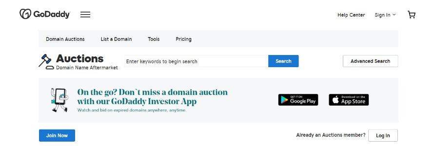 GoDaddy.com Web Page